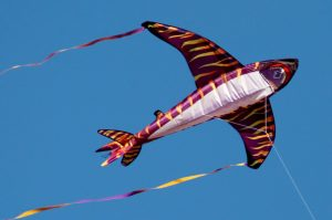 Kitty Hawk Kites Beach Kite Festival