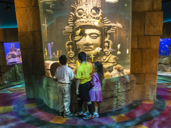Great Maya Reef Exhibit