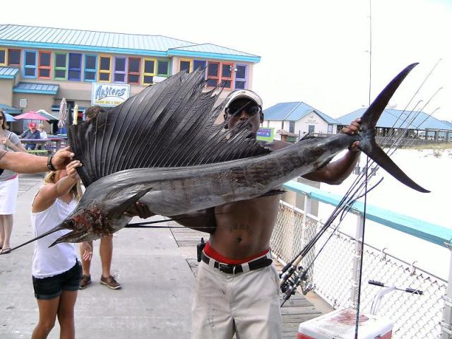 Okaloosa Island Fishing Pier What You Need To Know